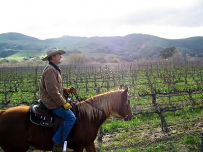 horse_winery